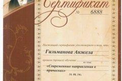 Certificate09